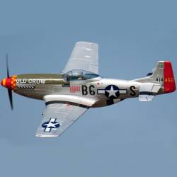Freewing FlightLine P-51 1410mm PNP (Old Crow)